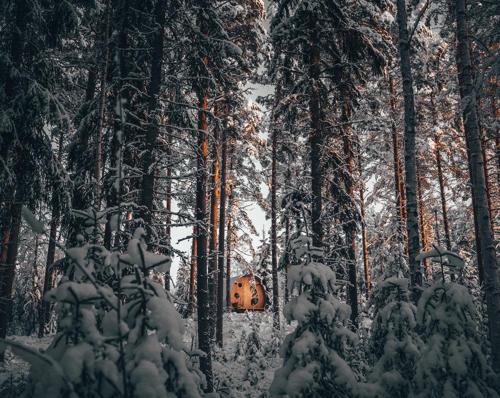 treehouse_viggo_lundberg (9 av 24).jpg