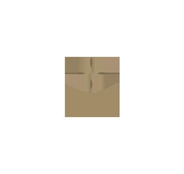 HYATT_REGENCY-01.png