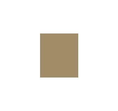 ST_REGIS-01.png