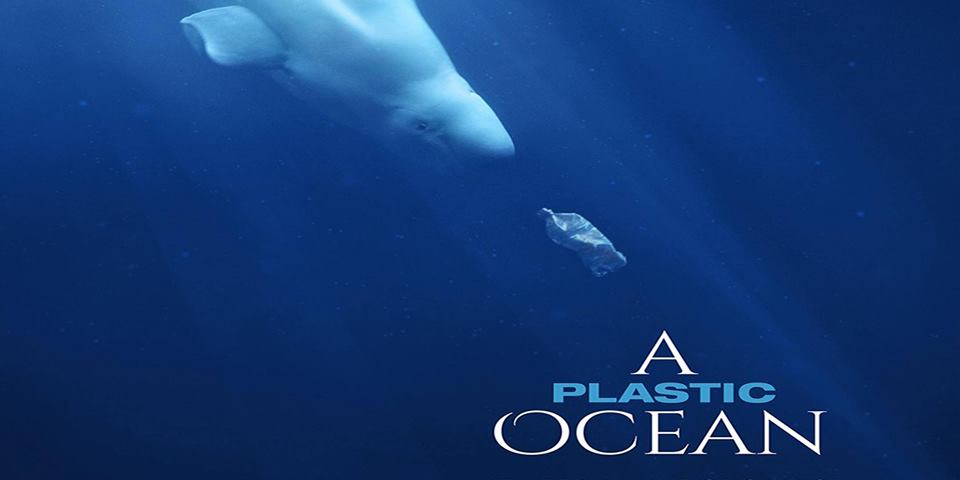 A Plastic Ocean - A Plastic Ocean begins when journalist Craig Leeson, searching for the elusive blue whale, discovers plastic waste in what should be pristine ocean. In this adventure documentary, Craig teams up with free diver Tanya Streeter and an international team of scientists and researchers, and they travel to twenty locations around the world over the next four years to explore the fragile state of our oceans, uncover alarming truths about plastic pollution, and reveal working solutions that can be put into immediate effect.