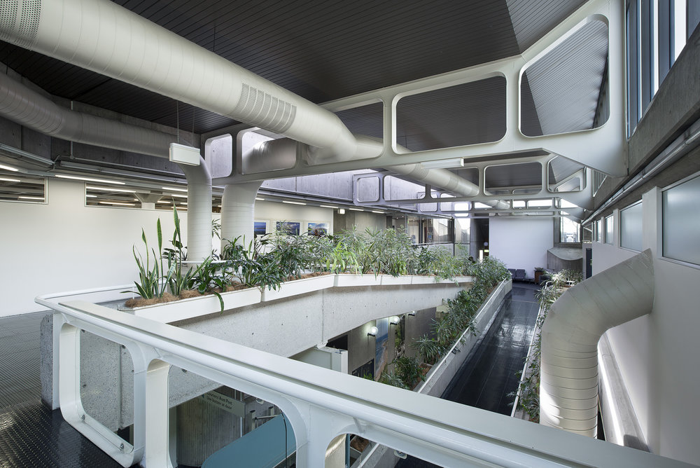 upper_atrium3.jpg