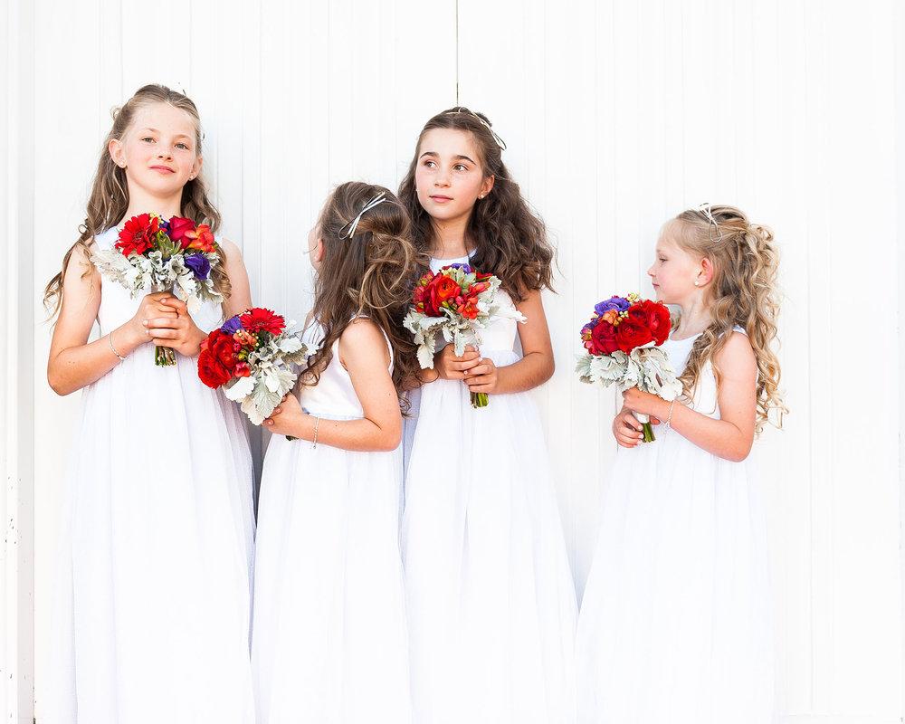 Marryme_wedding_photography_dorrigo_bellingen_photographer_52.jpg