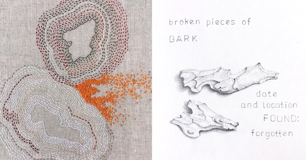 Bonnie Sennott, Presence/Absence: Broken Bark, 2017, pearl cotton on linen and graphite on paper (found object diptych), private collection