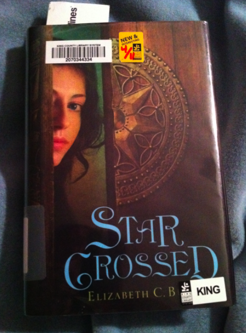 The cover for Starcrossed by Elizabeth C. Bunce