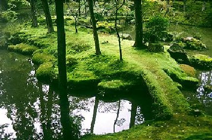 Emerald moss lays carpet-like over rolling garden banks. Tall black tree trunks spear upwards, and a silver, reflective pond sits quietly in the lower left of the frame.