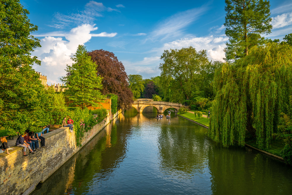 The Cambridge Backs