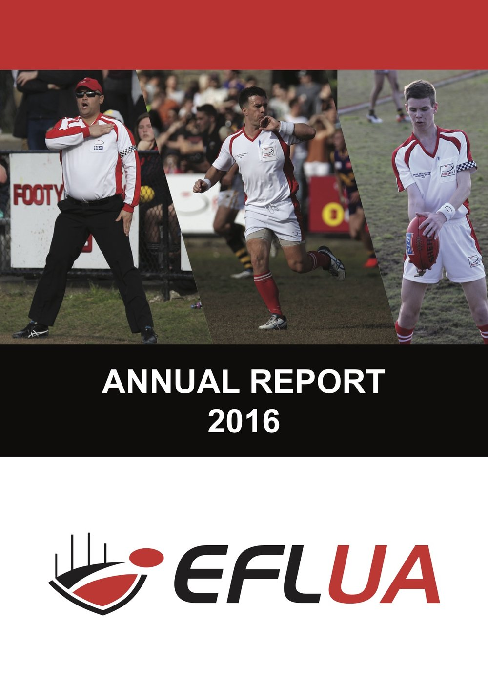 2016 Annual Report IMAGE.jpg