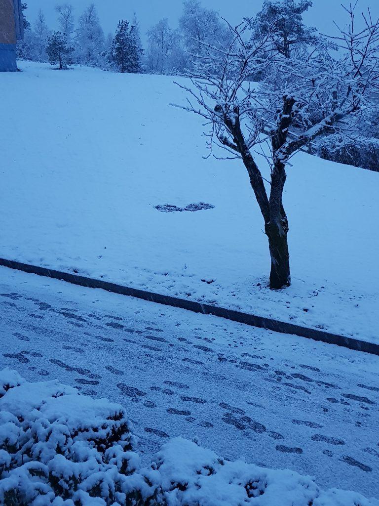 Snow in Fyllingsdalen as seen from my living room