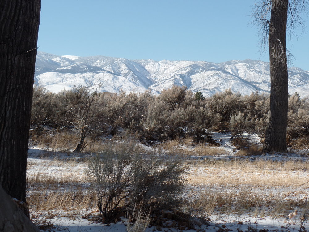 View of east side of Sierra Nevada mountains