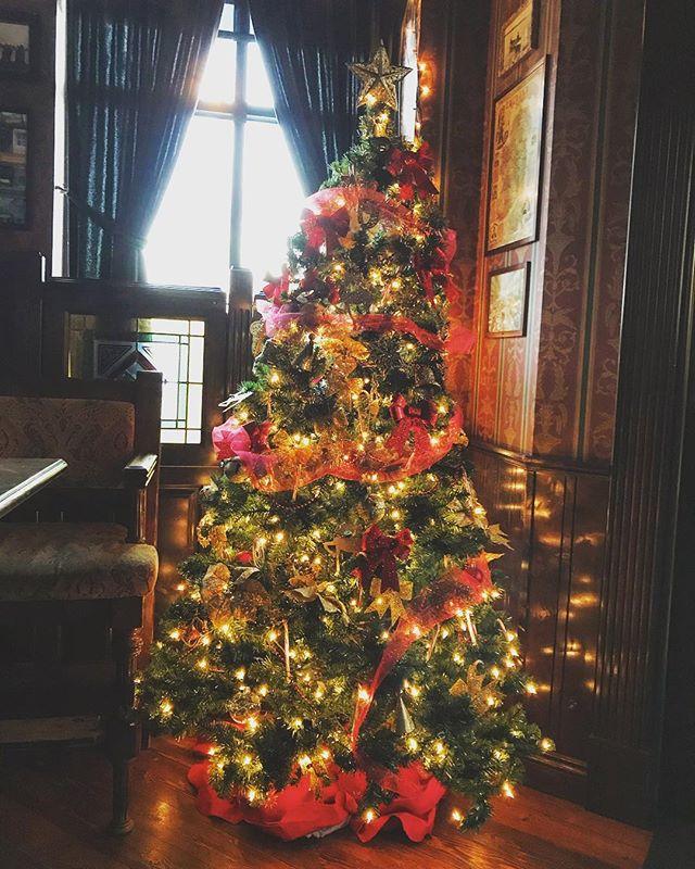 The tree is up, and we're ready for the holidays! 🎄🎄🎄🎄 . . . . #christmas #christmastree #christmasdecor #merrychristmas #happyholidays #seasonsgreetings #chicago #chicagoland #ravenswood #tistheseason #december