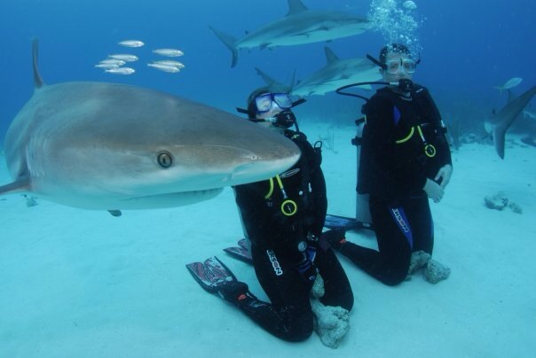 Beth and her friend Jaws