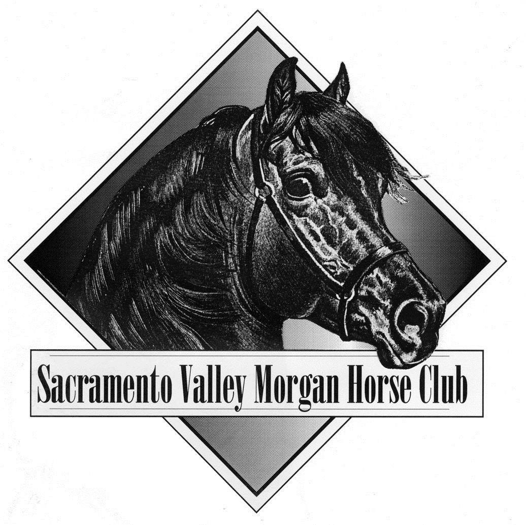 Sacramento Valley Morgan Horse Club