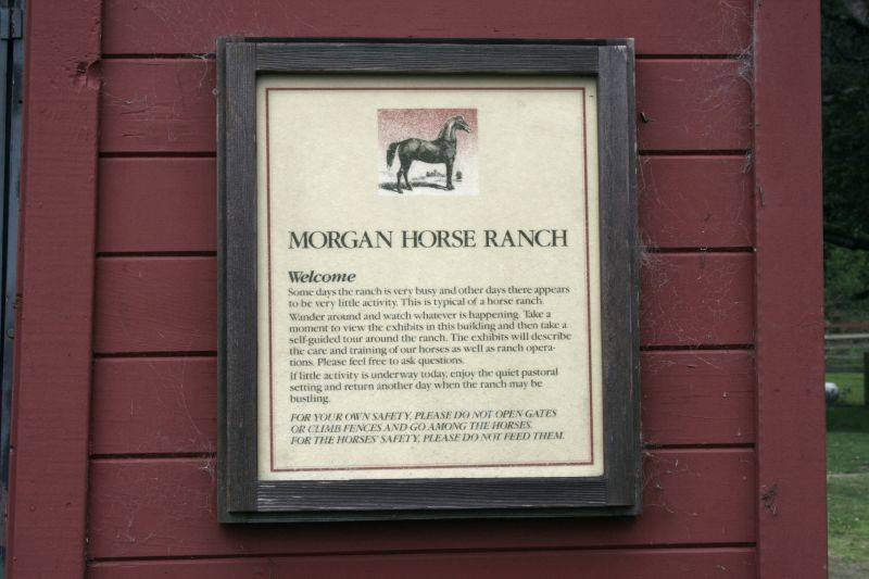 Morgan Horse Ranch Sign.jpg