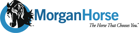 - The American Morgan Horse Association