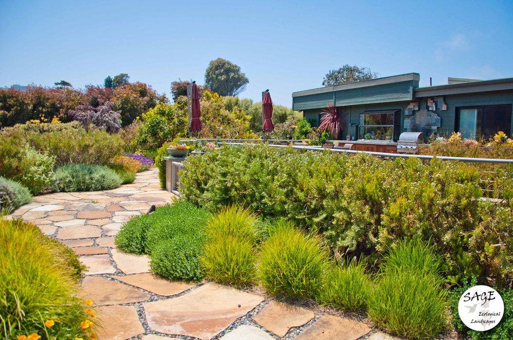 morro-bay_garden-pathway.jpg