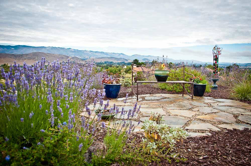 san-luis-obispo-landscaping-sage-ecological-landscapes-o-residence-web-size-1-of-92__dsc0513.jpg
