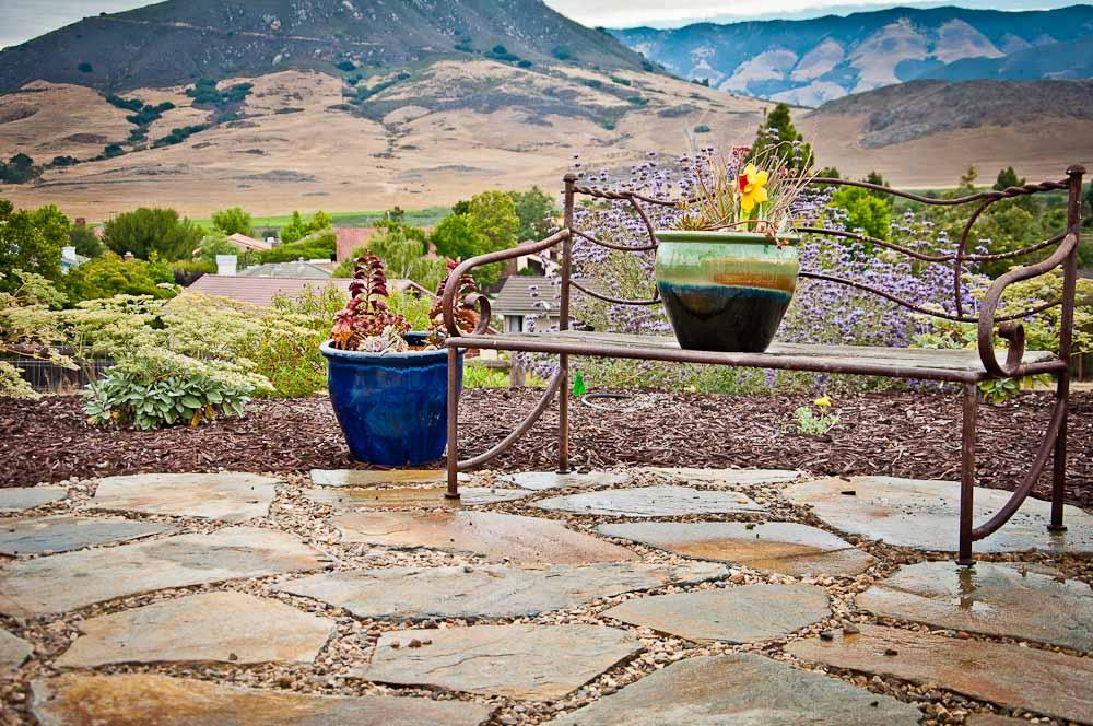 san-luis-obispo-landscaping-sage-ecological-landscapes-o-residence-web-size-2-of-92__dsc0515.jpg