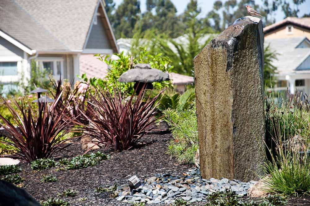 san-luis-obispo-landscaping-sage-ecological-landscapes-anderson-residence-web-size-11-of-44_20120914-untitled-shoot-untitled-9073.jpg