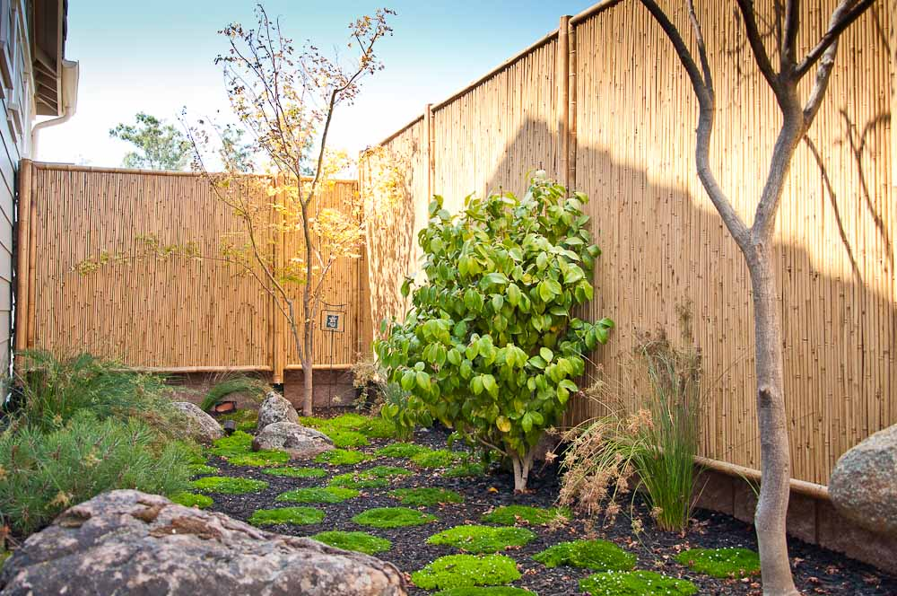 san-luis-obispo-landscaping-sage-ecological-landscapes-anderson-residence-web-size-17-of-44_20120914-untitled-shoot-untitled-8996.jpg