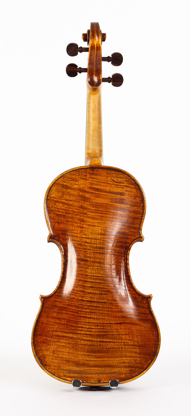 Starkie Guarneri model violin 2016 back.jpg