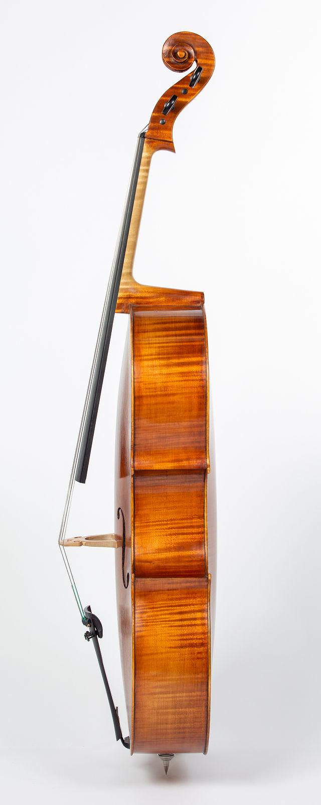 Starkie Strad B model cello 2019 side.jpg