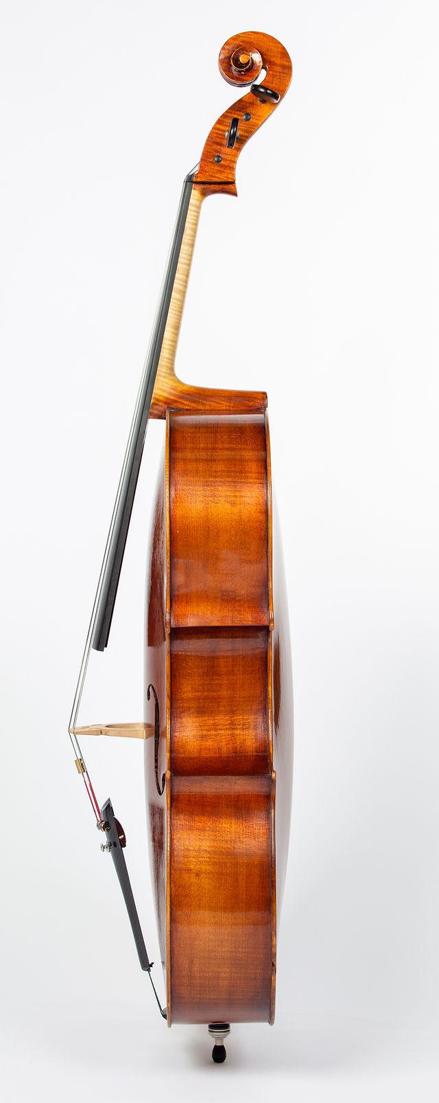 Starkie Grancino model cello 2018 side.jpg
