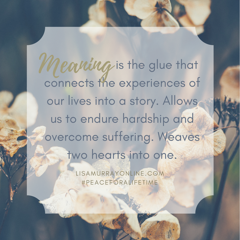 Meaning-is-the-glue-that-connects-the-experiences-of-our-lives-in-a-story-allows-us-to-endure-hardship-and-overcome-suffering.-weaves-two-hearts-into-one..png