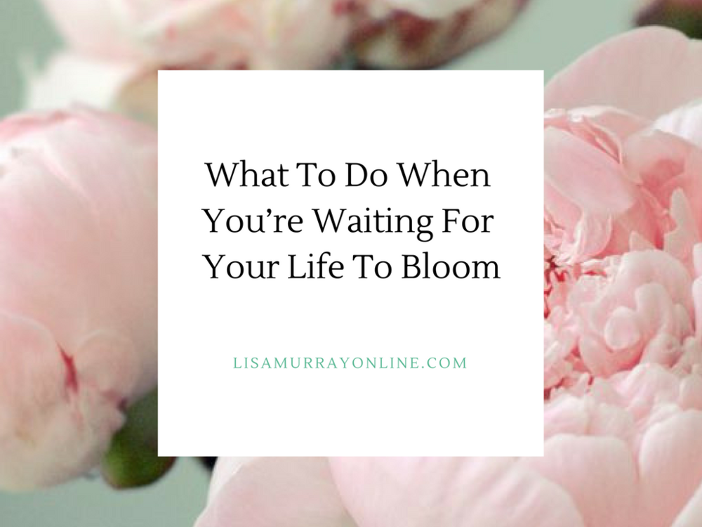What To Do When You Are Waiting For Your Life To Bloom