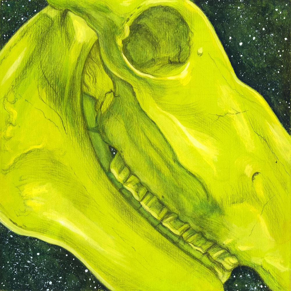 image_stardust_green_horse_skull_1500.jpg
