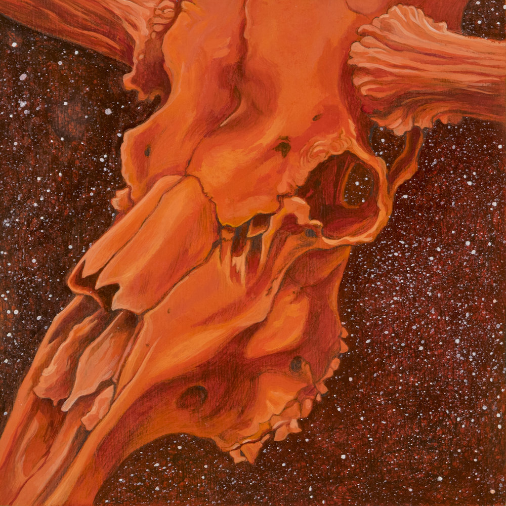 image_stardust_orange_moose_skull_1500.jpg