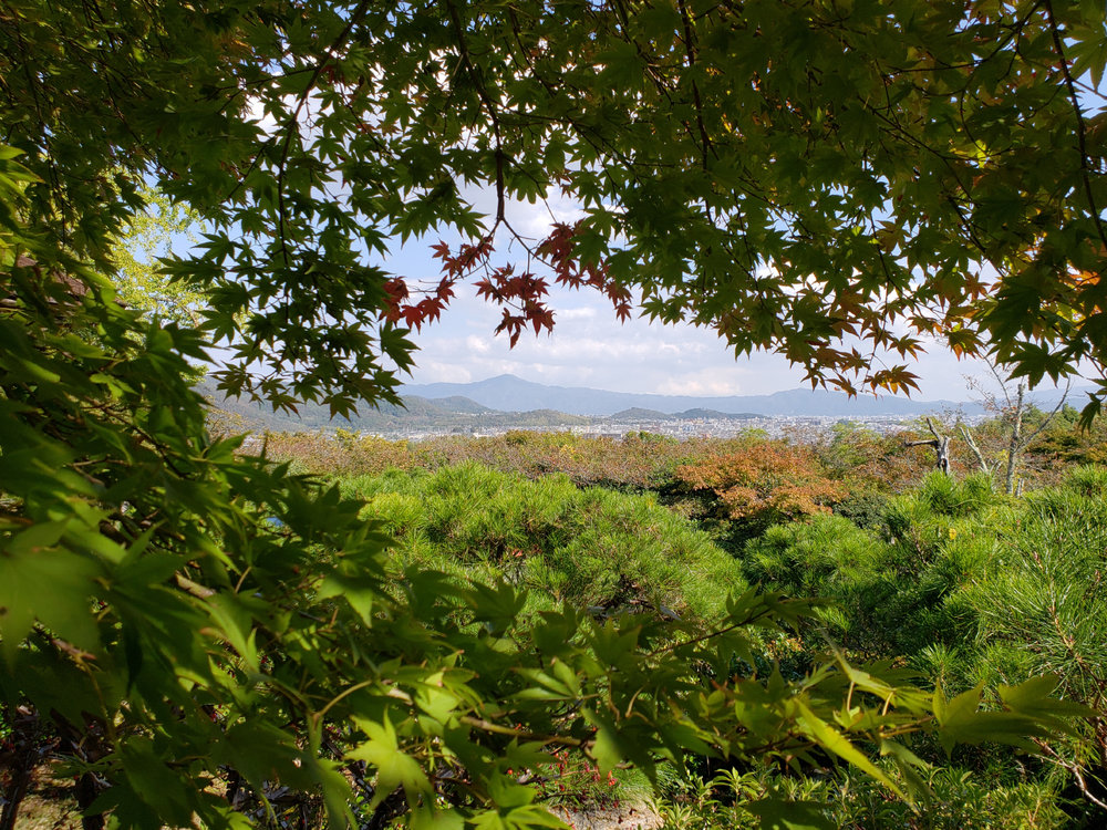 The view across the Kyoto valley.