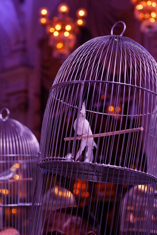 SBM_CA-Special-Event-Surrealist-Dinner-0066.jpg