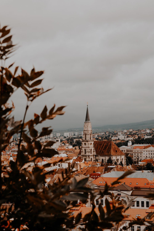 Cluj - Napoca -