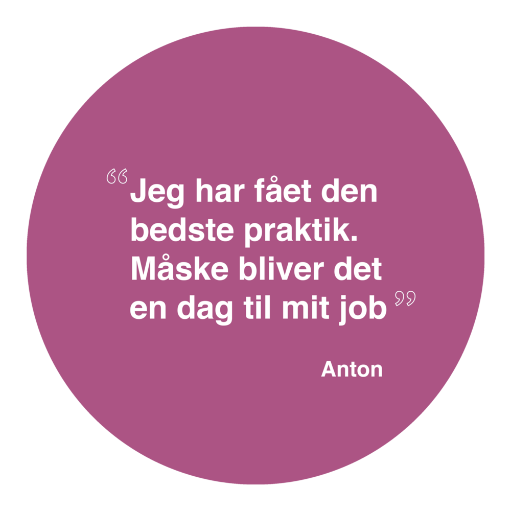 Anton1.png