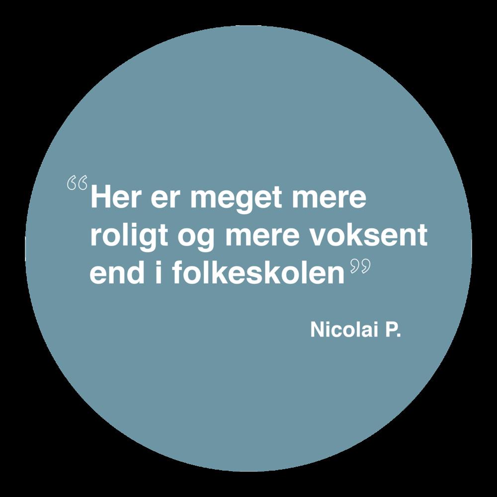 NicolaiP1.png