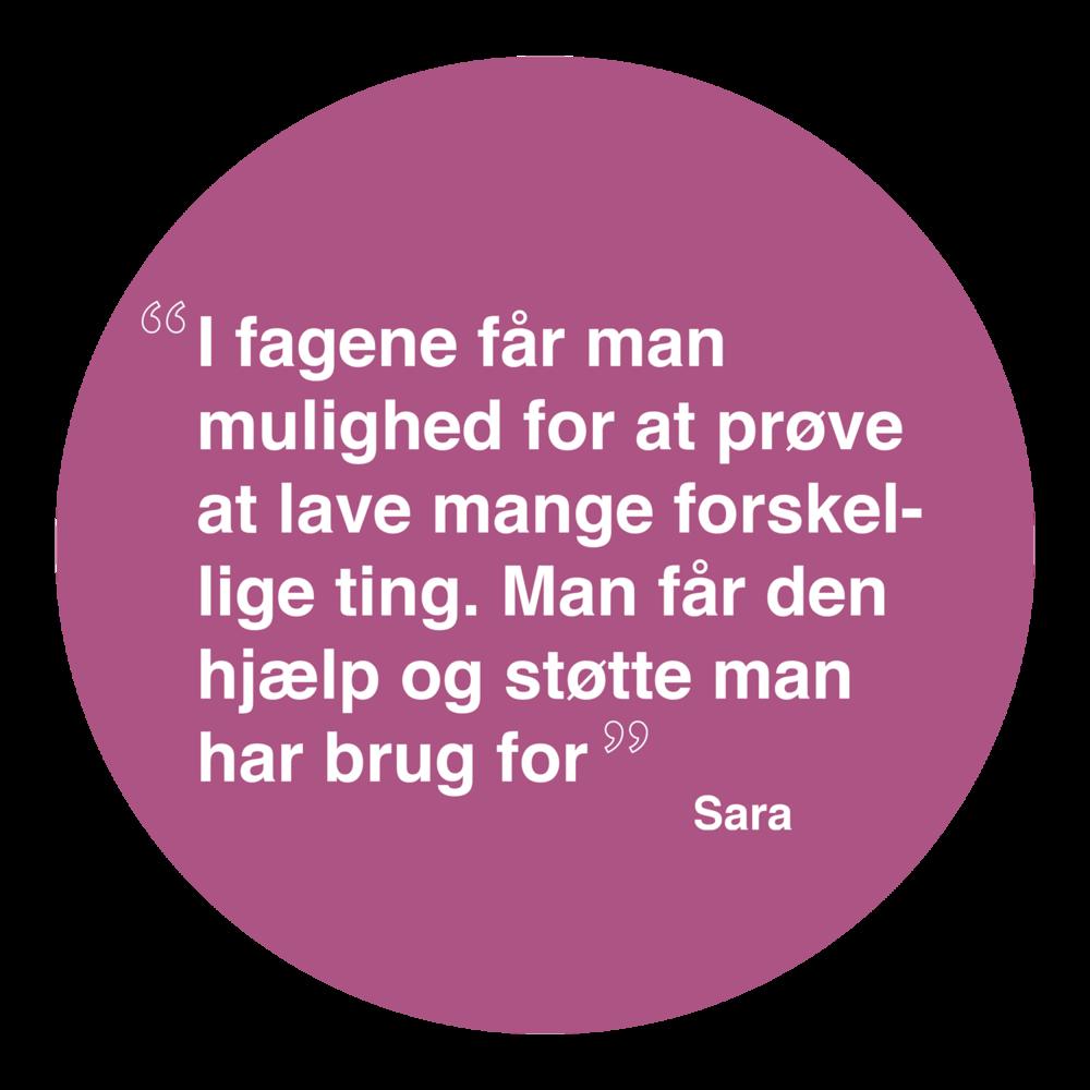 Sara1.png