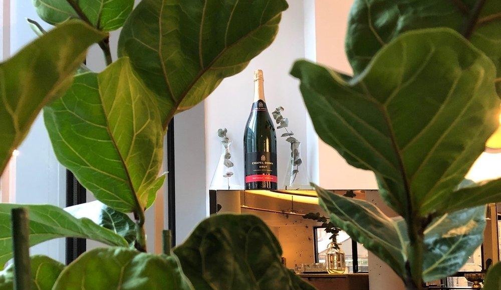 plants for restaurant, large plants, artificial plants for restaurants, restaurant table plants