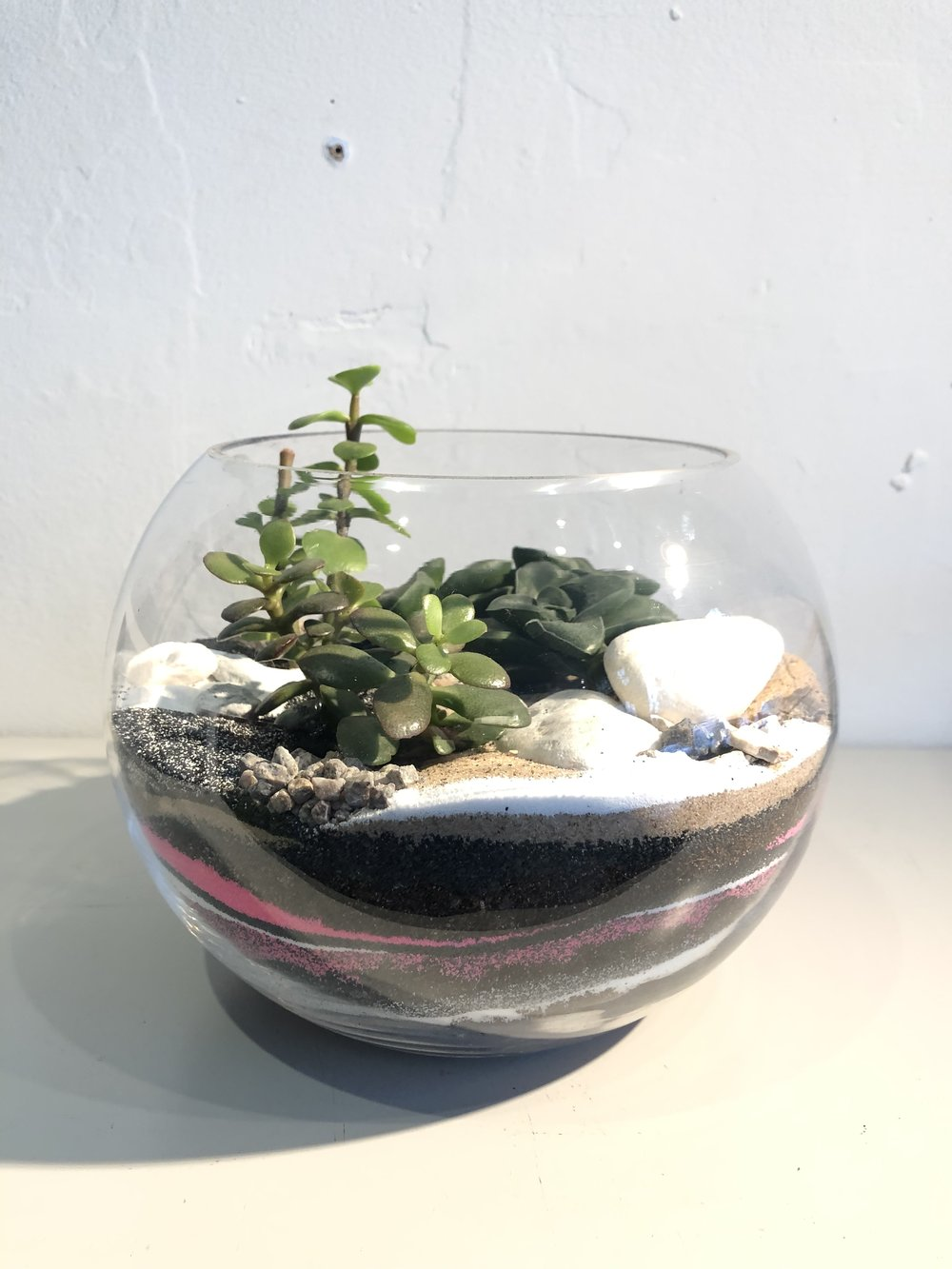 succulent terrarium workshop, terrarium workshop near me, succulent workshop near me, terrarium workshop london