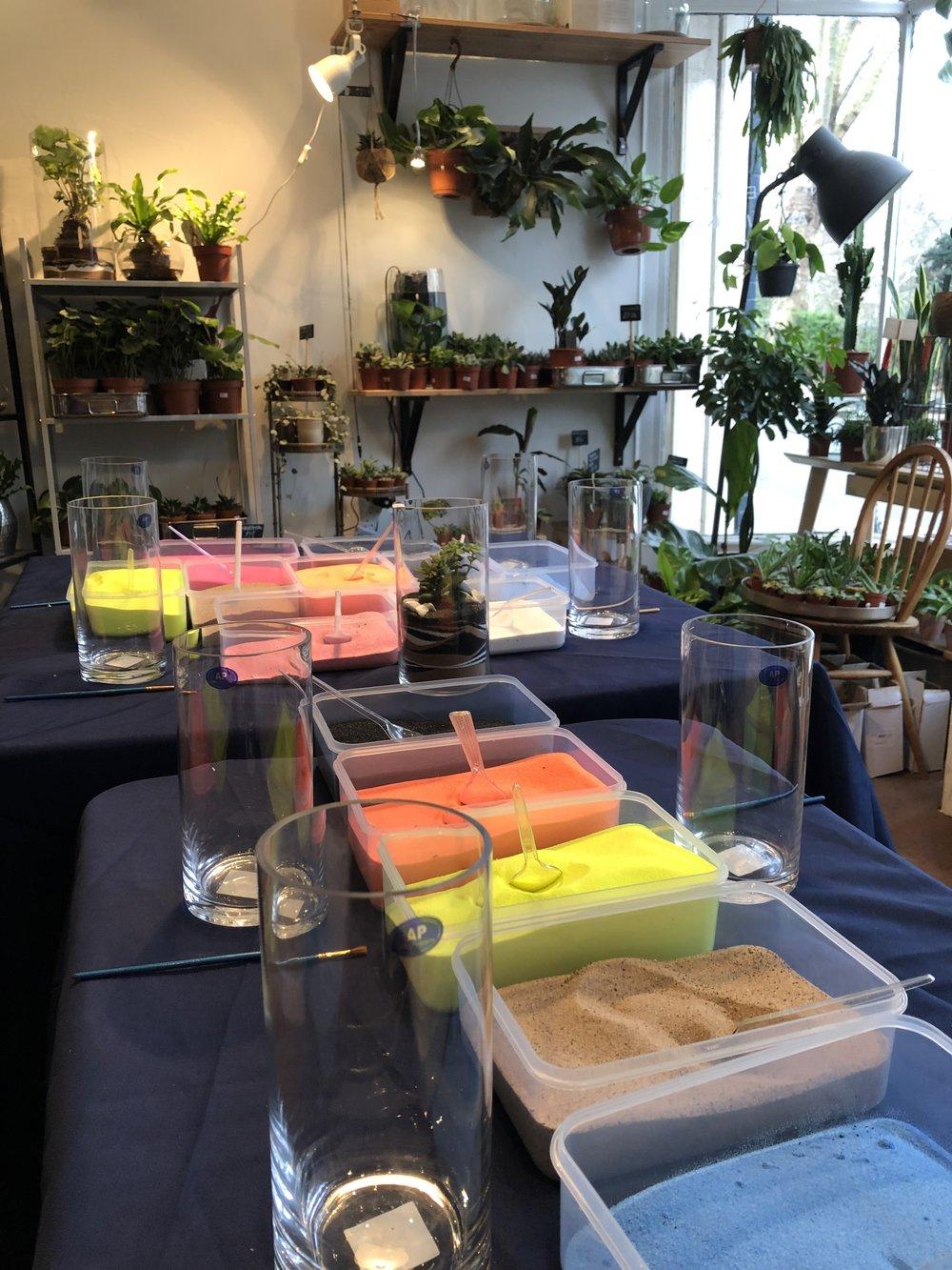 succulent terrarium diy, terrarium diy workshop, succulent terrarium kit, succulent terrarium ideas, succulent terrarium for sale