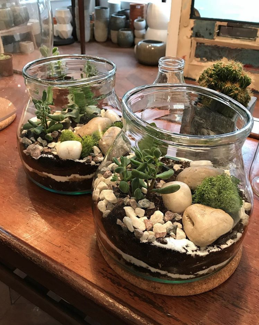 Wedding terrariums for rent