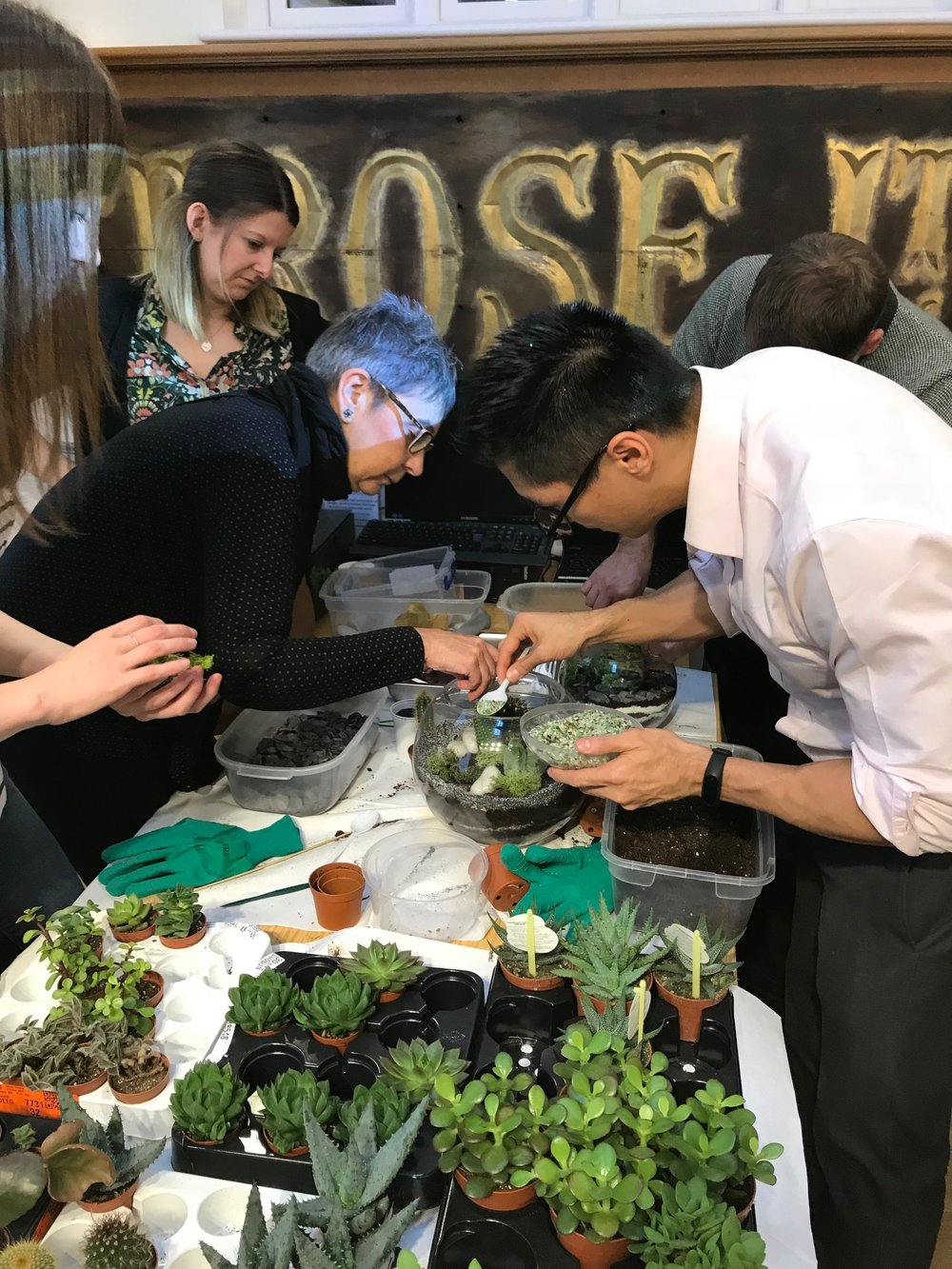 The teams collaborated on their terrarium builds to make unique succulent terrariums for the office spaces.