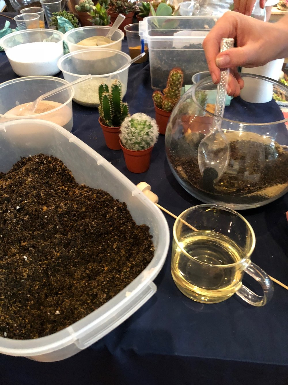 Terrarium Workshops in Crouch end