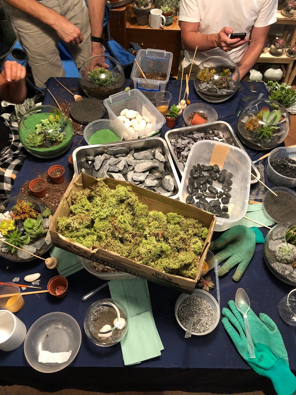 North London Terrarium Workshop