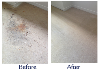 carpet-cleaners-london-carpet-cleaners-london-ontario-carpet-cleaners.jpg