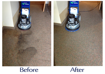 london-carpet-cleaners-london-ontario-carpet-cleaning.jpg