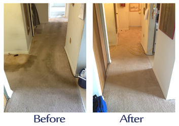 london-carpet-cleaners-london-ontario-carpet-cleaners.jpg