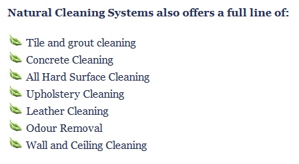 industrial cleaning services london ontario natural cleaning services by natural cleaning systems.jpg
