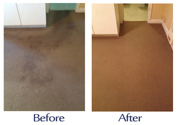 london-carpet-cleaners-london-carpet-cleaners.jpg