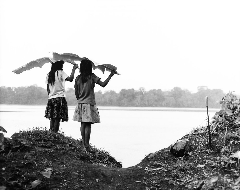 Two girls from the tribe of the Chuars standing in the rain with palm leaves over their heads, overlooking the Rio Pastaza.