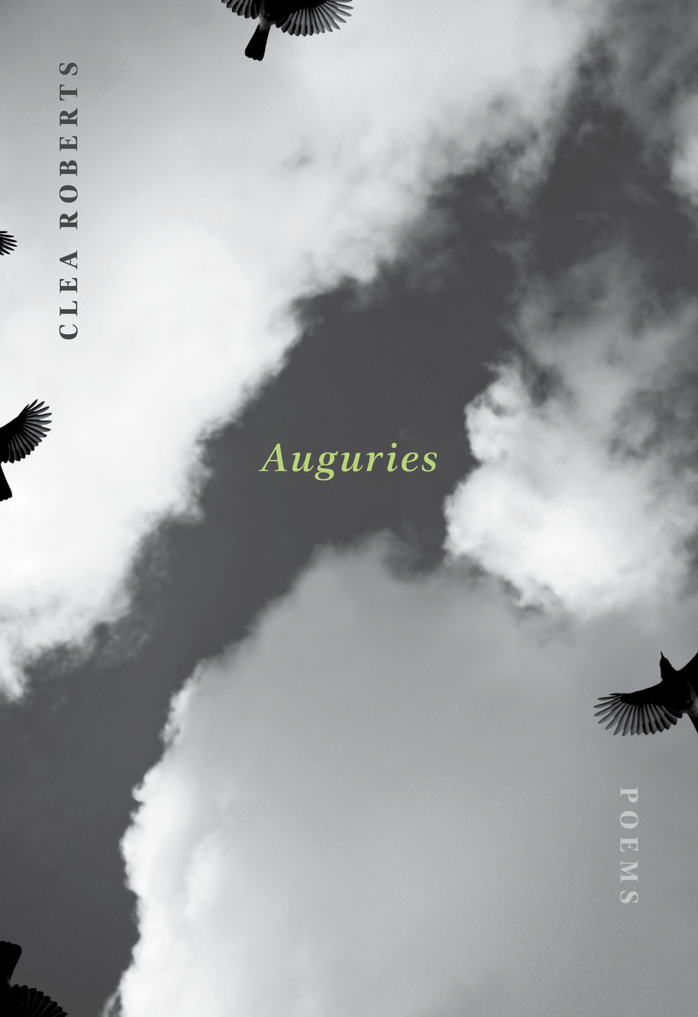 """- Dust on my boots, a blackstream edged with ice,and the whistle of the pika,so unadorned and fierceit tugs at the skywhere the cranes kettlealways on the vergeof an alphabet.Excerpted from """"Mountain Walking"""" in Auguries (Brick Books, 2017) © Clea Roberts"""